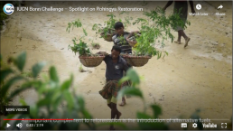 men carrying baskets with plants